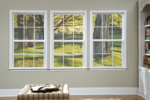 Series 130 Windows Product Photo
